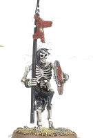 Humanoid skeleton with spear and shield (Skeleton Warrior for Warhammer) from Games Workshop - Miniature figure review