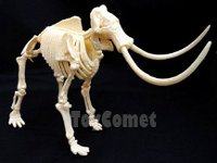 Wooly Mammoth Skeleton from ToyComet